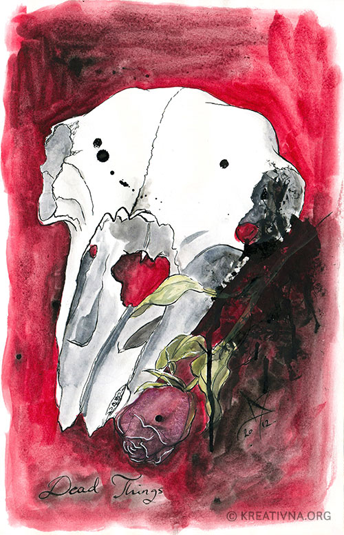 Crtež lubanje s ružom, akvarel i tuš